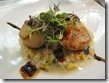 one flew south - scallops