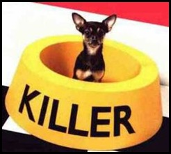 killer-funny-dog