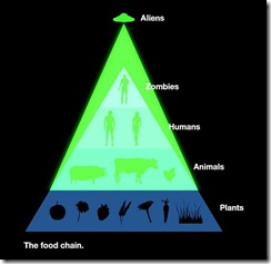 the-food-chain